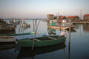 Tremblade-Boote